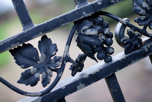 992/1000 - Gate Detail by Mark Carline