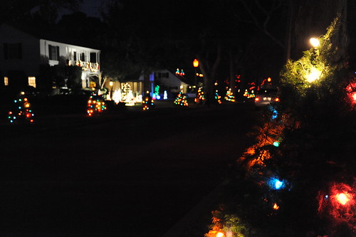 Palo Alto Christmas Tree Lane