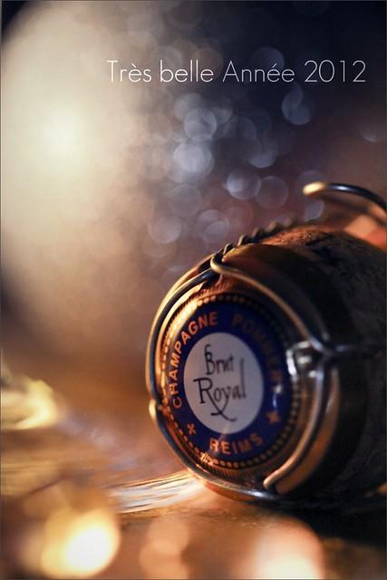 Très belle année 2012 - 1/366