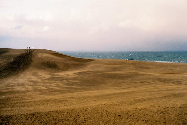 冬天的砂丘