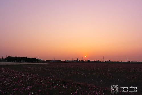 Samsung_NX200_16mm_sample_02
