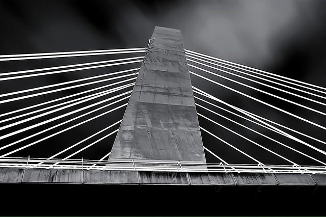 Pont de la Generalitat Bridge Elche