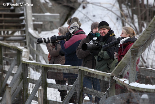 Always an Adventure's Photography group in action Parc Omega January 8, 2012 Brenda McCrea