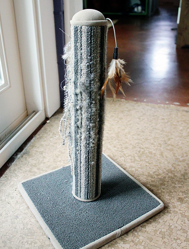 Cat scratch post