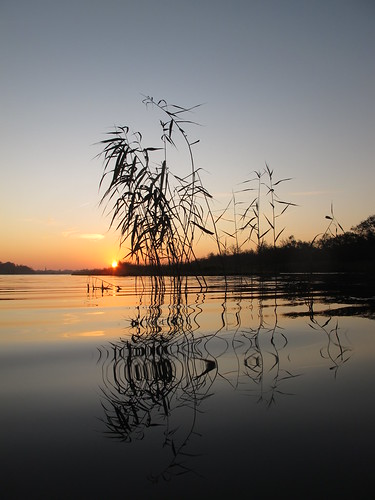 autumn oktober reflection fall netherlands sunrise geotagged october herfst nederland zonsopgang weerspiegeling 2011 ankeveenseplassen thechallengefactory storybookwinner pregamewinner geo:lat=5226841015 geo:lon=506932408