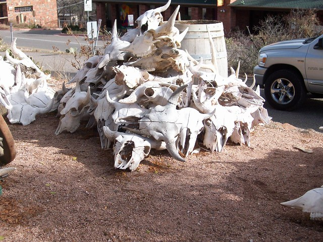 Big Ole Pile Of Skulls These were for sale in Sedona They weren't cheap