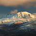 Mount St. Helens Evening Light II by Nietnagel