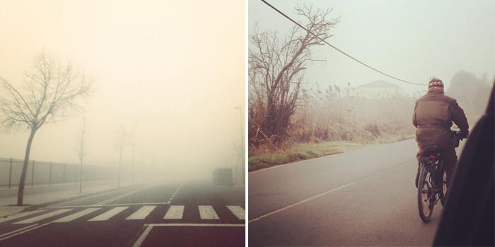 Bajo la niebla 6