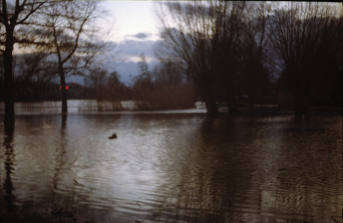 Hochwasser at the park outside the Zauberschloss 8