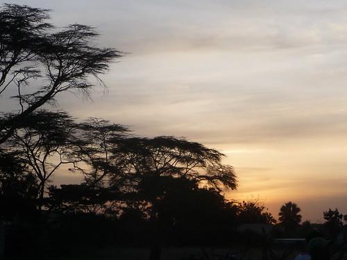 sunset sky cloud tree evening kenya nairobi shape thorn acacia hotdryseason