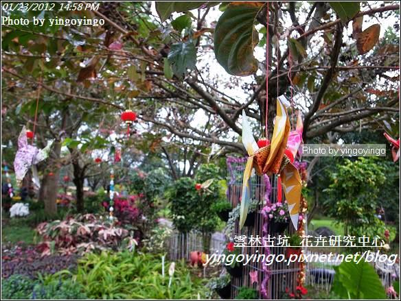雲林古坑_花卉研究中心20120123_R0050650