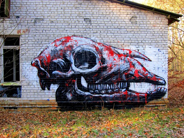 graffiti | roa | grabowsee 2011