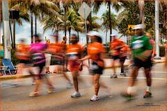 ING Miami Marathon, running, half marathon, marathon, fitness, health