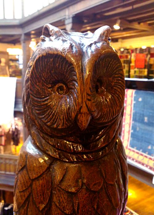 liberty owl2