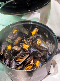 Aux Moules, Lille (France)