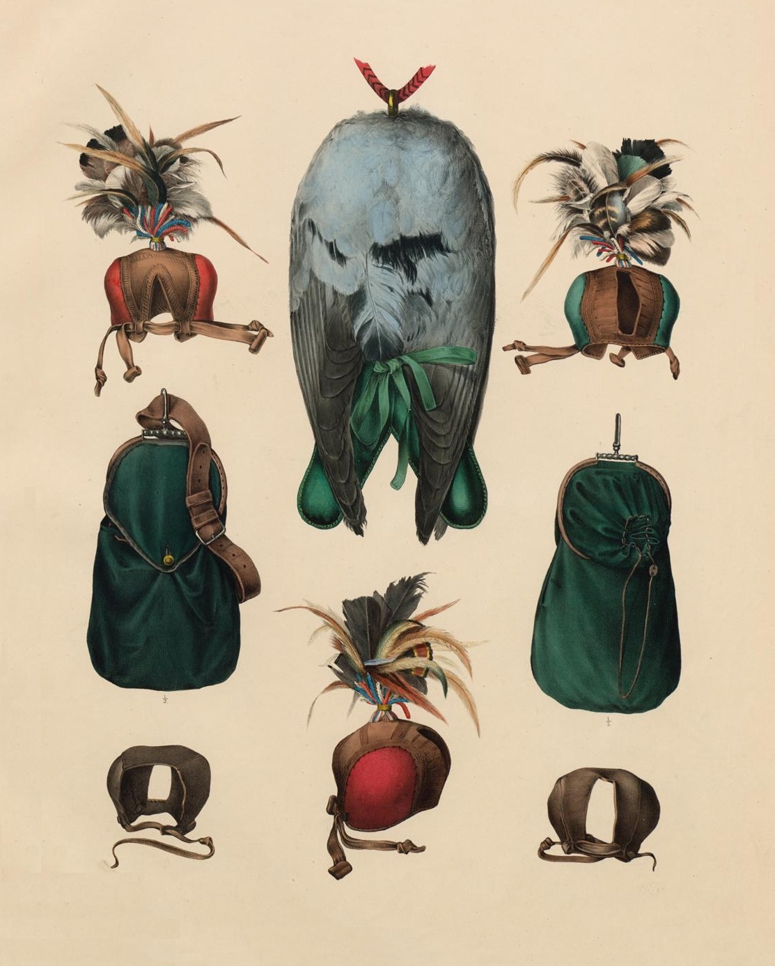 Falcon hoodwear in 'Traité de Fauconnerie' by H Schlegel, 1853