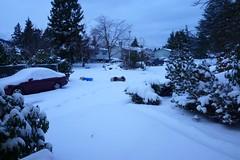 Snow Jan18