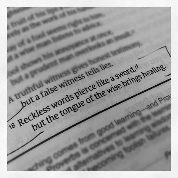 Day 33 #words #febphotoaday #365 #thebloomforum