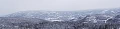 Fra formiddagens skitur inn mot Trillemarka. 5.02.12.