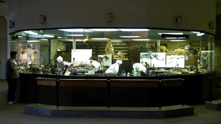 756x425-fishbowl-lab