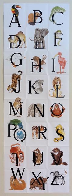 animal alphabet poster flickr   photo sharing