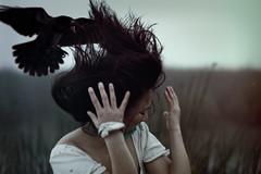 [フリー画像素材] 人物, 女性, 鳥類, 人物 - 動物 ID:201202111400