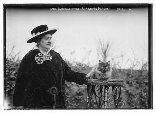 "Mrs. A.McAllister and ""Smoke Persian"" cat (LOC)"