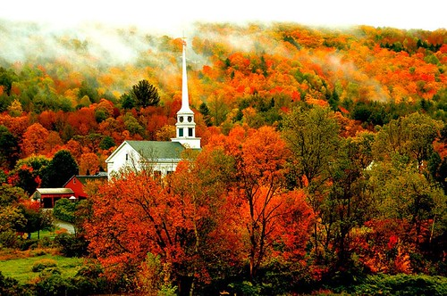 autumn trees white fall newengland whitechurchsteeplechurchfallcolorsvillagemountainfogstowevermontvtstowevermont