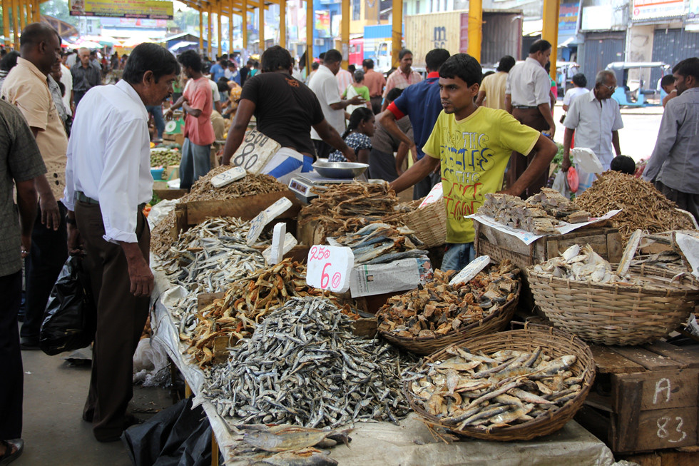 Dried Salted Fish Stand in Colombo, Sri Lanka