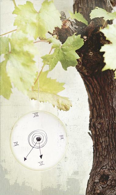"""ejer4: foto portada libro """"el viñedo del tiempo"""""""