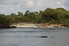 Guyana-8525