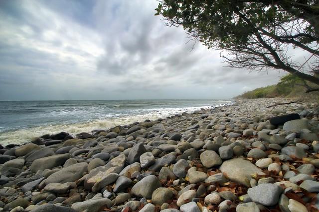 wangetti beach - photo #28