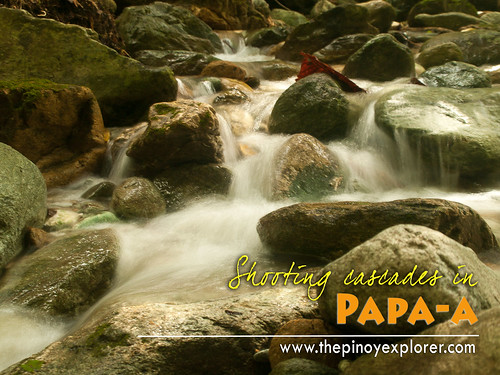 Shooting cascades in Papa-a
