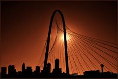 Dallas in the Light