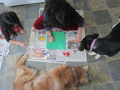Painting with Dogs