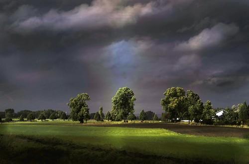 light sun green oregon landscape sauvie flickrduel