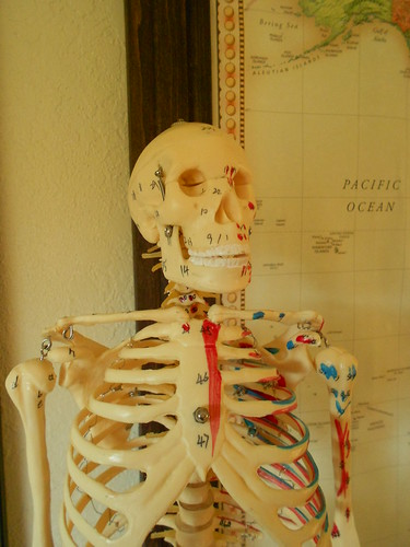 Big Tim the Anatomy Skeleton - Smiling