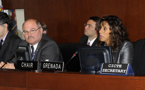 OAS Member Countries to Debate the Strengthening of Cyber Security at their Next Meeting on Terrorism