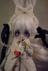 Alice C3