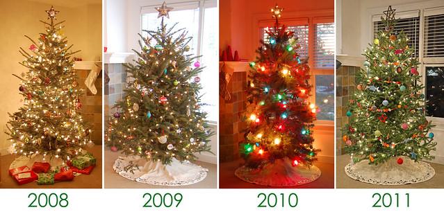 christmas trees 2008-2011