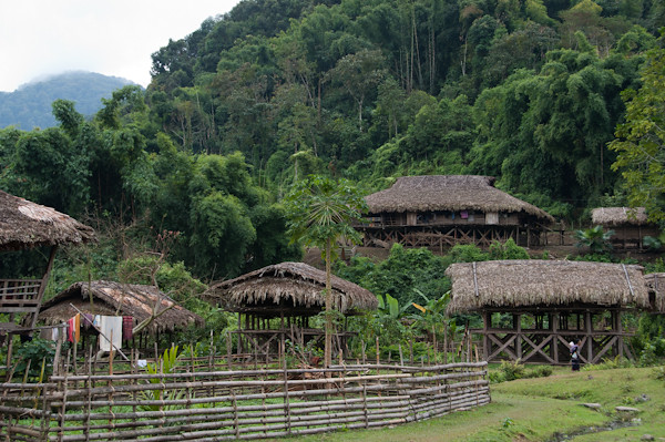 Casas de bambú y techo de palmera