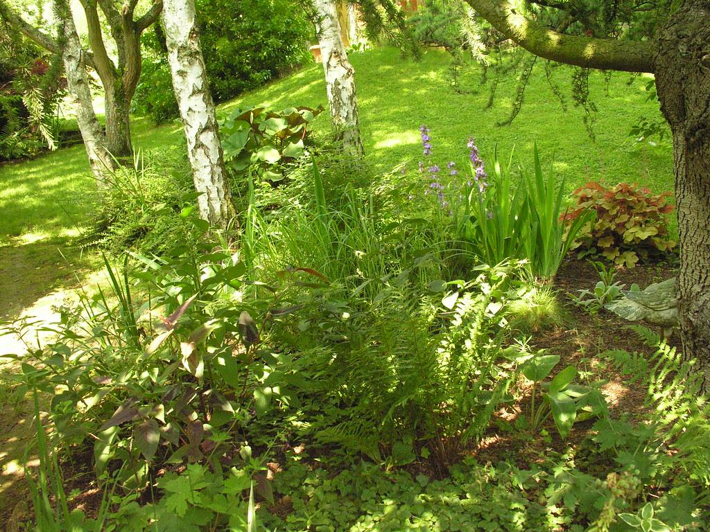 Les Jardins Des Monts D Or le jardin des roses à st romain au mont d'or 69 france | flickr