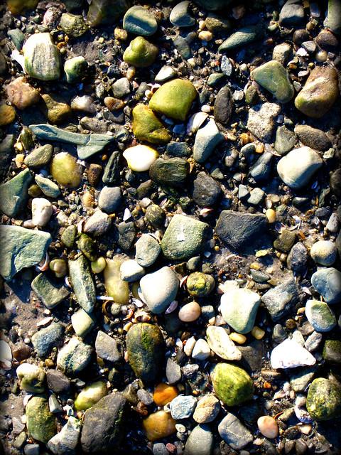 Beach Walk ~ Stones