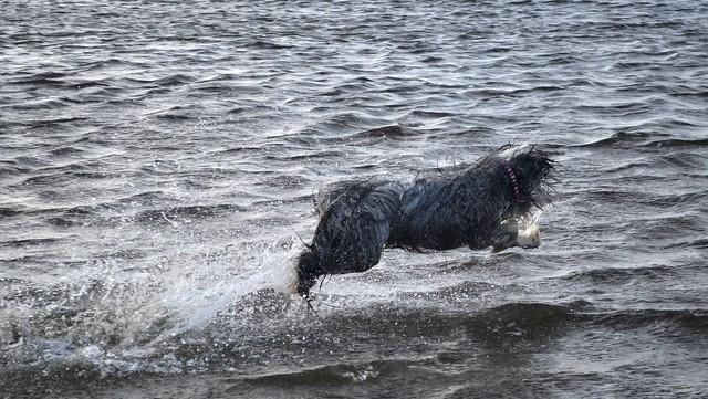 Walk on water again!