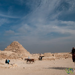Camels and Tourists at Khufu Pyramid Complex - Giza, Egypt
