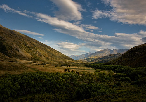 bravo valley nz otago wanaka mototapu