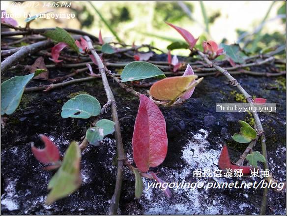 南投信義鄉_帝綸大飯店20120108_R0050311