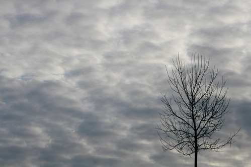 Loving the sky