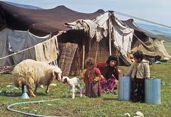Blízký východ před 45 lety – 9. díl – Kurdistán
