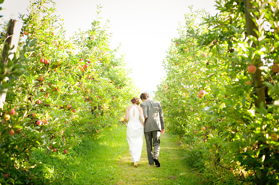 Married couple walking through apple orchard at Mt. Hood Organic Farms.
